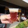 アウグス谷中ビアホール - ドリンク写真:谷中ビール(540円)