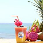 ハンモックカフェ ラ・イスラ - 美肌・ダイエットに驚きの効果として話題のドラゴンフルーツ。 可愛いフラミンゴのついたフレッシュジュースです。