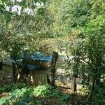常陸屋 - お座敷からの眺め