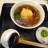 夫婦庵 - 料理写真:天ぷらそば
