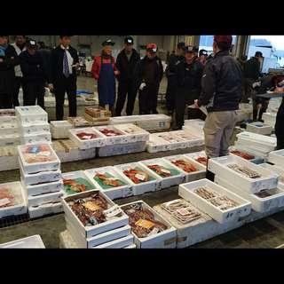 仲買人が営む店だから毎朝セリ落とした新鮮な魚介類が入荷します