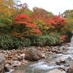 74750813 - 【2017.10月上旬】松川温泉※「松川荘」の裏側の景色です。露天風呂からも似たような景色が見る事が出来ます。