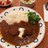 Yamakama - 料理写真:スパイシーチキンカレーご飯少なめ+パクチー追加