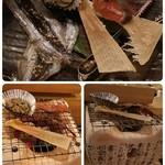 74784224 - 海鮮あぶり 5点セット 1280円税込み  鮭とば、かに味噌、エイヒレ、ししゃものみりん干し、ホタルイカ干物