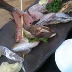 佐島かねき - 地魚にぎり寿司