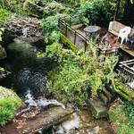 相福庵 - 橋の上から写真を撮りました。