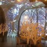 TREE by NAKED tajimi - ツリーバイネイキッド多治見 TREE by NAKED tajimi 店内風景 2017.10.15撮影