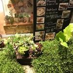 コーヒーマーケット - オサレ可愛いグリーンたち♡