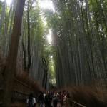 京都嵐山温泉 渡月亭 - 嵐山竹林