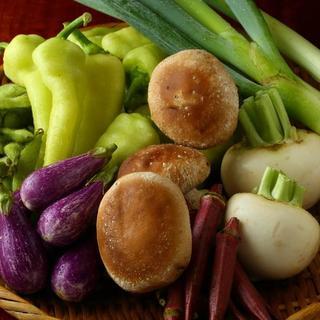 朝採れ新鮮な三浦野菜を、焼きものやサラダでヘルシーに堪能