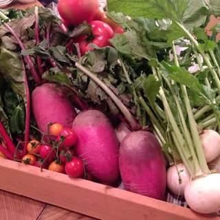 こだわりランチは千葉の契約農家からの新鮮野菜を使用