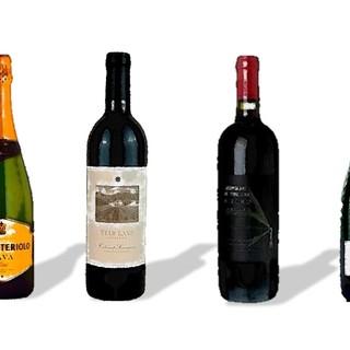 世界中から厳選した50種を超える自然派ワイン