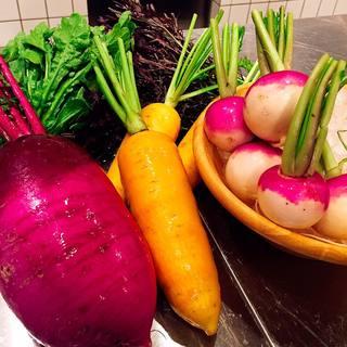 契約農家さんのオーガニック野菜