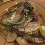 シャティバ - 鯛の頭