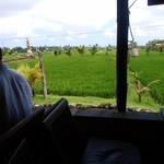 75116910 - 田園風景横のテラス席から。