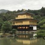 75136423 - 言わずと知れた金閣寺。