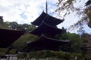 肉食堂 最後にカツ。 - [2017/09]この三重塔(重文)は元は奈良にあったものだそうです。