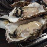 かいのみ - ぷりっぷりの牡蠣