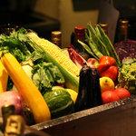◇Fresh Salad