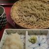 唐変木 - 料理写真:辛味大根そば