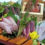 魚沼の恵をあなたへ 八海山バル - ボタン海老、鰹のタタキ、ハマチ、ハチビキ、カサゴの刺身