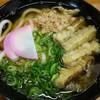 博多ホームうどん - 料理写真:ごぼう天うどん(かしわ入り) 430円