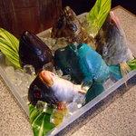 南島食楽園 - 魚カブトのあら煮、またはマース煮でどうぞ。