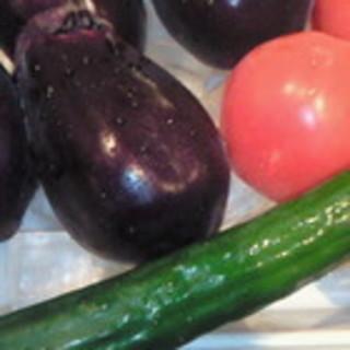 こだわりの新鮮野菜も人気!