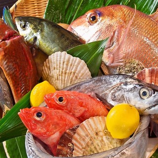 築地で仕入れる天然魚のみ!とことん食材を追求!