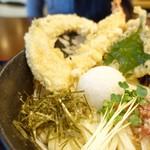 75450277 - 天ぷら生醤油うどん                       海老、カボチャ、ナス、大葉