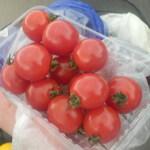西村農園 - 料理写真:ミニトマト♡