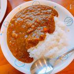 三賀屋 - 料理写真:薬膳カレーです。(2017.10 byジプシーくん)