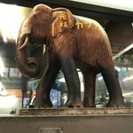 キッチン南海 - ゾウさん