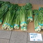 良味食堂 - 道の駅の生野沢菜