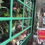 喫茶店 セブン - 窓際観葉植物は喫茶店のテンプレート