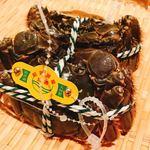 Kandayunrin - 上海蟹