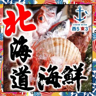 ◆北海道:水産卸直営◆~根室・歯舞・紋別漁港~朝〆・一番セリ