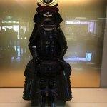 蘇山荘 - 家康の甲冑