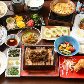 お得なコースや新鮮な刺身など、旬の食材を使った料理が目白押し