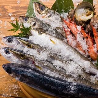 氷見港直送の鮮魚が自慢!富山湾で水揚げされる魚は抜群の美味さ