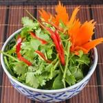 本格タイ料理 バンコク - パクチー盛り