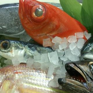 こだわりの産地直送鮮魚