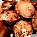 ビルーチェ - イタリア産フレッシュ ポルチーニ茸