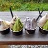 ソリッソ - 料理写真:注文したジェラート類