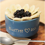 BLUETREE -