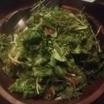 ゴルゴン9 - グリーンサラダ