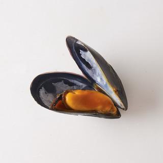 ムールを楽しむ!「カナダ・プリンスエドワード島産」のムール貝
