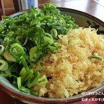 金比羅製麺 - ぶっかけうどん+葱+天かす