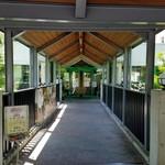 レストラン楓 - 百年草の入口
