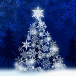 聖なる夜に★《クリスマスコース》のご予約受付中です!